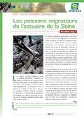 GIP Seine-Aval - Poissons migrateurs   DD Haute-Normandie   Scoop.it
