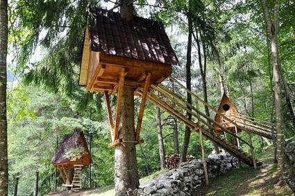 Tree Village, il primo villaggio italiano con le case sugli alberi [Foto] - Eticamente.net | EcoTurismo e Mobilità Sostenibile | Scoop.it