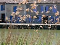Bon démarrage de la saison touristique estivale - CD31 | Haute-Garonne tourisme | Scoop.it