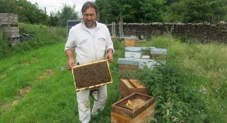 L'apiculteur face aux menaces - Courrier picard | Le Fil @gricole | Scoop.it