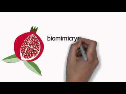 Regenerative Leadership | Free Education | Scoop.it