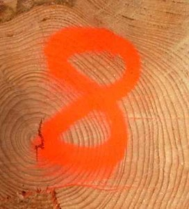 8 gute Gründe, warum Sie Ihren interessanten Fachartikel ... | Public Relations - PR | Scoop.it