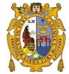 UNMSM - Universidad Nacional Mayor de San Marcos | ROSA EVELIN PEREZ APONTE | Scoop.it