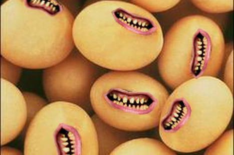 Les bienfaits du soja, une mystification | Toxique, soyons vigilant ! | Scoop.it