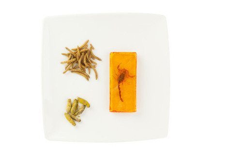 Edible Insects Coming To A Table Near You - Eat Drink Better | Entomophagy: Edible Insects and the Future of Food | Scoop.it