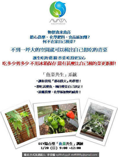 DIY Aquaponic System Workship In Taiwan | Vertical Farm - Food Factory | Scoop.it