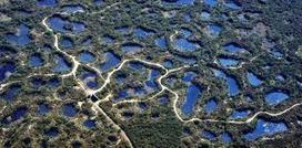 Le Petit Poitevin: La réserve naturelle du Pinail | Séjours nature dans le Nord de la France : cerfs dans le Pinail, phoques en  Baie-de-Somme, pêche à la mouche à Coyolles | Scoop.it