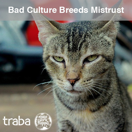 Bad Culture And What To Do About It - TalentCulture | People Transform Organizations | Scoop.it