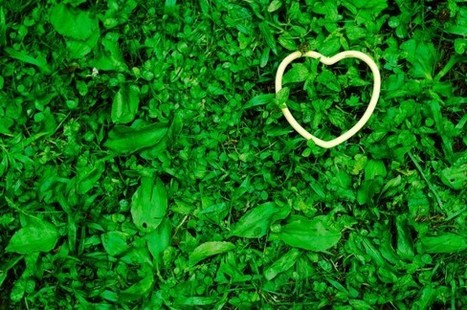 40 Tips to Go Green at Home for Earth Day   Kids Going Green!!   Scoop.it