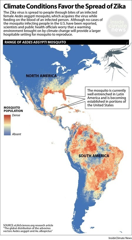Warming World Spreads a Wider Welcome Mat for Zika-Carrying Mosquitoes | Sustain Our Earth | Scoop.it