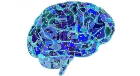 Tipos de memoria: ¿cómo almacena los recuerdos el cerebro? | Linguagem Virtual | Scoop.it