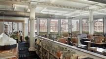 Biophilia and Workspace Design   Sustainable Design in your Interiors   Scoop.it