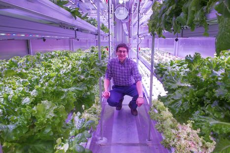 Arctic farming: Town defies icy conditions with hydroponics | Vertical Farm - Food Factory | Scoop.it