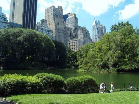 Large City Parks and Green Spaces Promote Well-Being | Smart Cities in Spain | Scoop.it