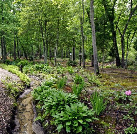 Gardening: Growing trends - Richmond Times Dispatch | Wellington Aquaponics | Scoop.it