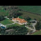 How To Buy A Vineyard Estate | Winecations | Scoop.it