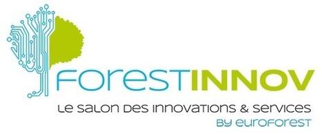 Innover pour développer la compétitivité de la filière forêt-bois | Filière bois - général | Scoop.it