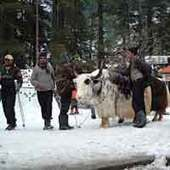 Manali tour packages from Hyderabad | Holiday Visiting places | Scoop.it