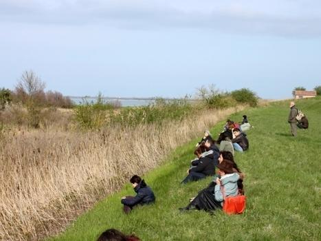 'Soundwalking d'estate', cammino in ascolto nel paesaggio sonoro - RavennaToday   S.G.A.P. - Sistema di Gestione Ambiental-Paesaggistico   Scoop.it