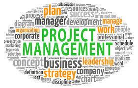 Management software Development Company | peaktechnolinks | Scoop.it