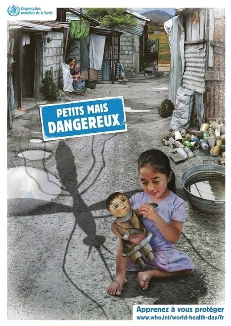 L'IPT et la Journée mondiale de la Santé consacrée aux maladies à transmission vectorielle: 7 avril 2014.   Institut Pasteur de Tunis-معهد باستور تونس   Scoop.it