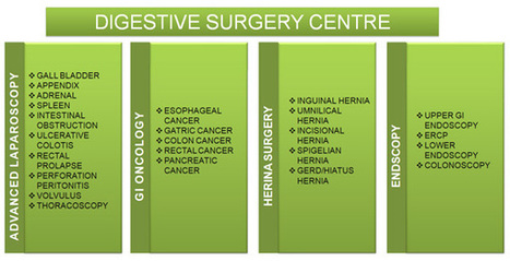 Digestive surgery centre –under the leadership of Dr. Muffazal Lakdawal | health | Scoop.it