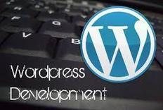 Why Businesses Should Go for Wordpress Development Services? | Open Source Software Development Services | Scoop.it