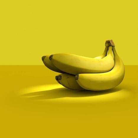Researchers Hope 'Super Bananas' Will Combat Vitamin A Deficiency | Genetic engineering and Human genetics, background reading and resources for IB | Scoop.it