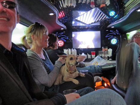 Concord Winery Tour, Affordable Winery Tour in Concord | Bay Area Limo Wine Tour Service | Scoop.it
