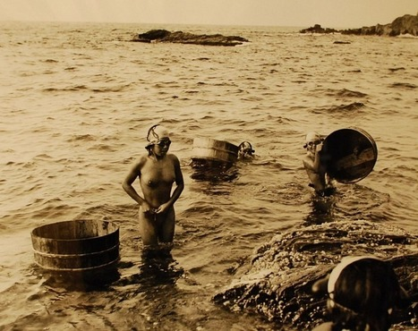 Ama - The Pearl Diving Mermaids of Japan | What's new in Visual Communication? | Scoop.it
