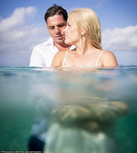 Underwater trash the dress shoots are the latest wedding trend | ScubaObsessed | Scoop.it