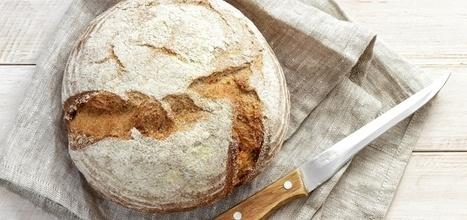 Giving Up Gluten? Why You Should Say Hello To Sourdough | Cómo convertirte en la mejor versión de tí mismo. | Scoop.it