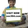 SOC 304 ASH Course Tutorial(soc304.dotcom)