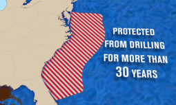 Landmark Decision Approves Seismic Airgun Testing for Oil & Gas Drilling Off Atlantic Coast | EcoWatch | Scoop.it