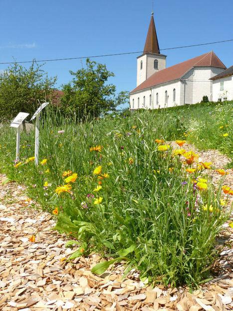 Flânerie poétique au cœur de la nature franc-comtoise | Labyrinthes pédagogiques | Scoop.it