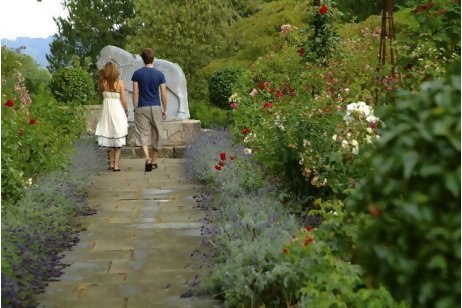 Why not open private gardens to the public? - The National   Garden Designer   Scoop.it
