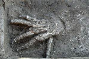Severed right hands unearthed in ancient Egypt palace | Discovering Ancient Egypt | Scoop.it