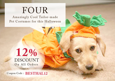 Tailor-made Pet Costumes For Halloween And Pet Supplies Deals On Discount | BestVetCare | Pet Care | Scoop.it