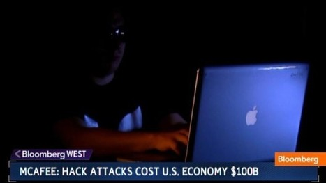 The Real Cost of Cyber Crime: Video | McAfee | Scoop.it