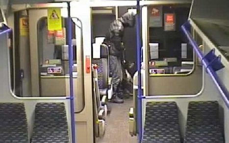 CCTV footage shows man viciously abusing dog on train | Policing news | Scoop.it