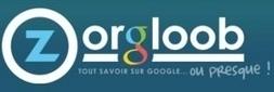 Zorgloob.com | Rechercher l'information sur google est-il une fatalité ? | Scoop.it