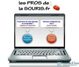 Le site du jour : Les Pros de la Souris, un site d'aide pour les débutants en informatique | Ateliers numériques en bibliothèque | Scoop.it