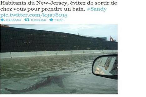 Ouragan Sandy: la gestion de crise se fait aussi sur les réseaux sociaux | crise sur les reseaux sociaux | Scoop.it