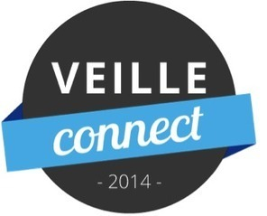 experligence : Le métier de chargé de veille en 2014 | Library & Information Science | Scoop.it