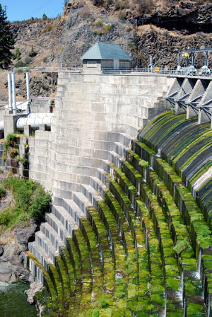 Removal of 4 Klamath dams would lift salmon count, studies find   Aquaculture   Scoop.it