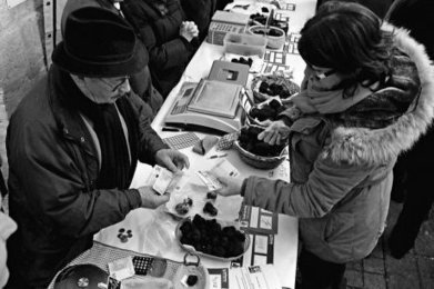 La truffe broie du noir   Agriculture en Dordogne   Scoop.it