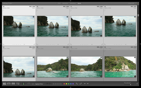 How to Find Your Best Images With Lightroom 5's Compare View - Digital Photography School | Lightroom tips | Scoop.it