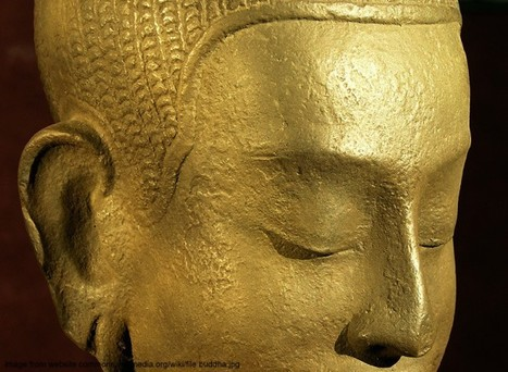 BUDDHA'S BRAIN: Interview with Dr. Rick Hanson on the science and spirituality of the brain | Contemplative Science | Scoop.it