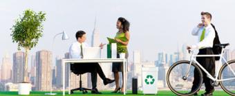 The Truth About Green Offices | Fransoix's Musings - Les intérêts de Fransoix | Scoop.it
