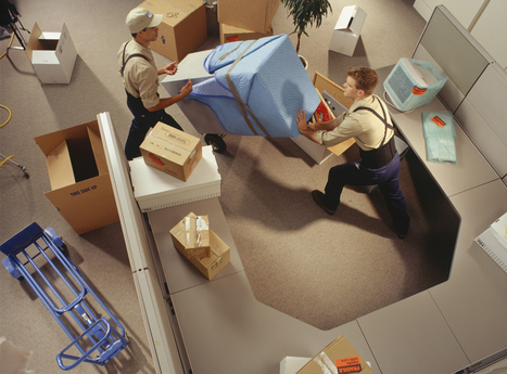Moving company in in Tampa FL by Christos & Christos Moving | Christos & Christos Moving | Scoop.it